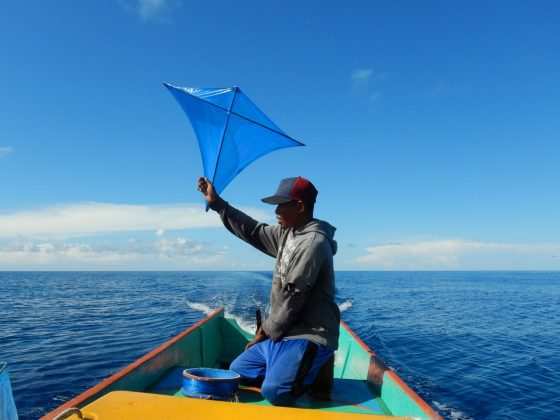 Overview - Focused on sustainable fisheries